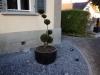 20_lieferung_gartenpflanzen_rapperswil_schweiz