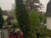 01_Thuja_Brabant_500-600cm