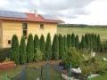 Thuja Smaragd / Lebensbaum Smarag 350-400cm