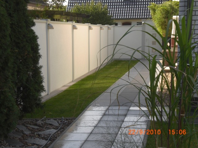 bambus_fargesia_jumbo_versch_grosen_1