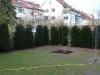 taxus_baccata_heckenelement200cm