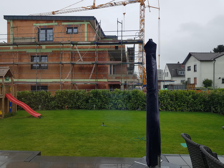 Schönes Laubgehölz als Sichtschutz zum Nachbarn gesucht