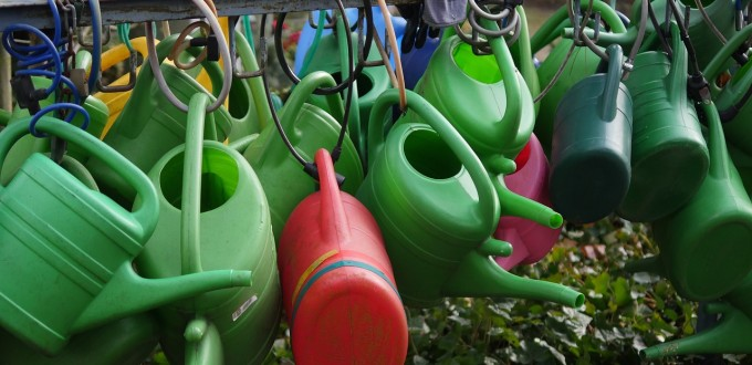 watering-cans-2166159_1280