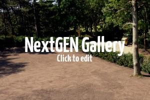 Unsere Pflanzen in den Gärten unseren Kunden – heute 200 Kirschlorbeer in Schweden