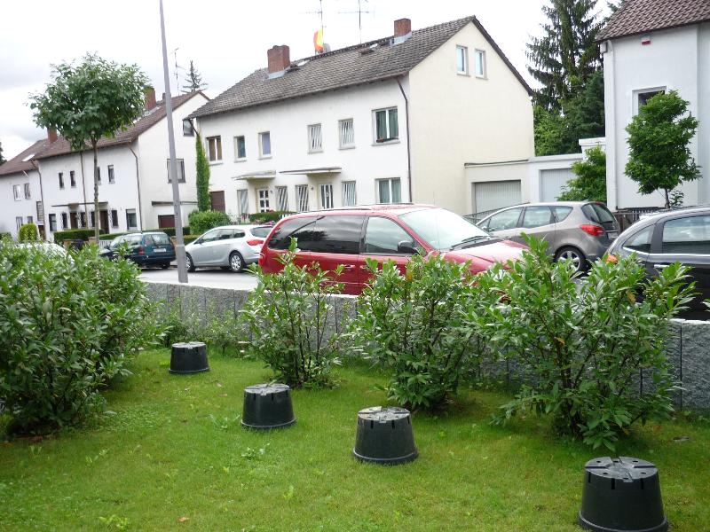 sichtschutz f r den vorgarten welche pflanzen eignen sich fragen bilder pflanz und. Black Bedroom Furniture Sets. Home Design Ideas