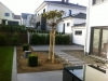 01_Prunus_Buxus_Catalpa
