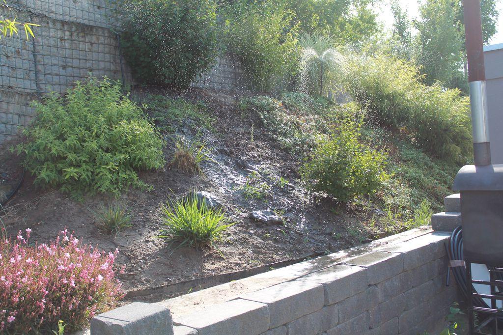 Hangbepflanzung Bodendecker empfehlungen für hangbepflanzung gesucht: abwechslungsreich und