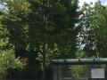 Ahorn_Stadt_2