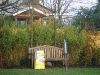 bambus_fargesia_jumbo_175cm_2