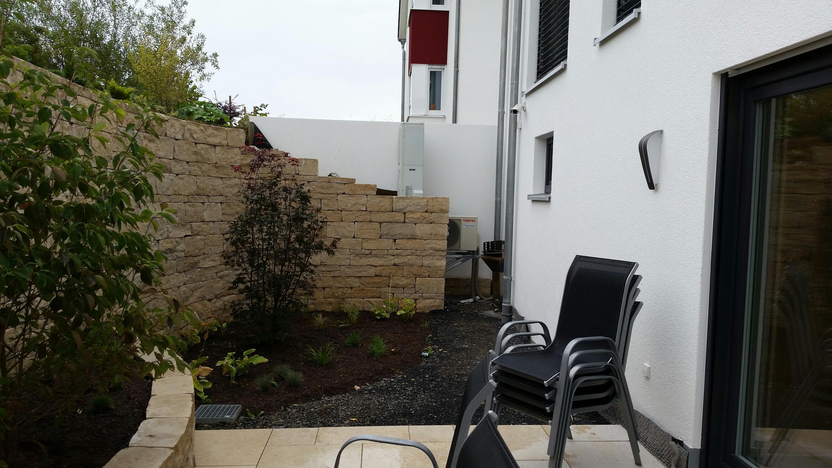 empfehlung f r buschige gartenpflanzen gesucht fragen bilder pflanz und pflegeanleitungen. Black Bedroom Furniture Sets. Home Design Ideas