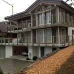 Welche Bambus-Sorte gut als Sichtschutz für Terrasse geeignet?