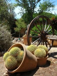 Meditterrane Gärten sorgen für hierzulande für Urlaubsstimmung