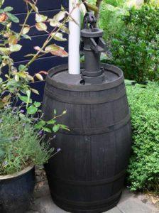 Alte Weinfässer als Regentonnen sind dekorativ und praktisch zugleich